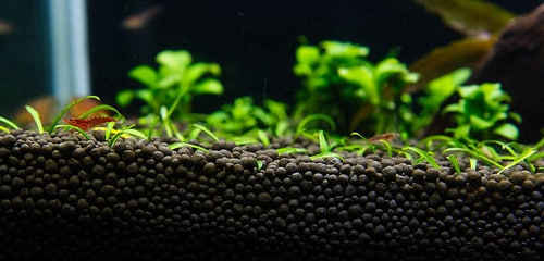 caribsea-flourite-substrate-3