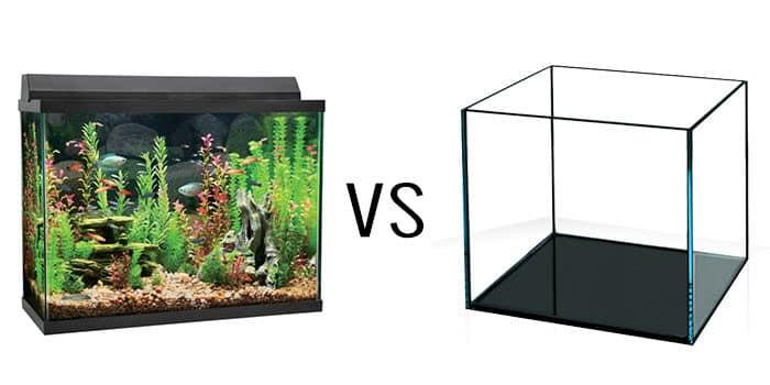 Rimless Aquarium Tank Vs Euro Bracing Article 2 Aquaticmag 8077902