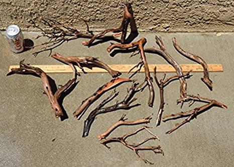 manzanita-driftwood-3