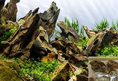 20-lbs-ohko-stone-dragon-stone-by-aquarium-plants-galore-2